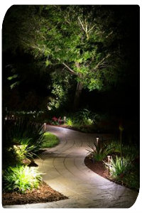 Landscape Lighting techniques